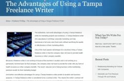 portfolio custom blog writing 2
